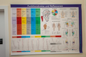 Tierarztpraxis Hieronymus Bilder_172